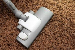 Nettoyer maison des tiques