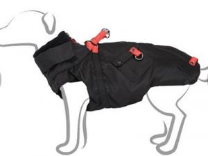manteau pour chien complice